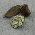 Smokey Bear Lapel Pin