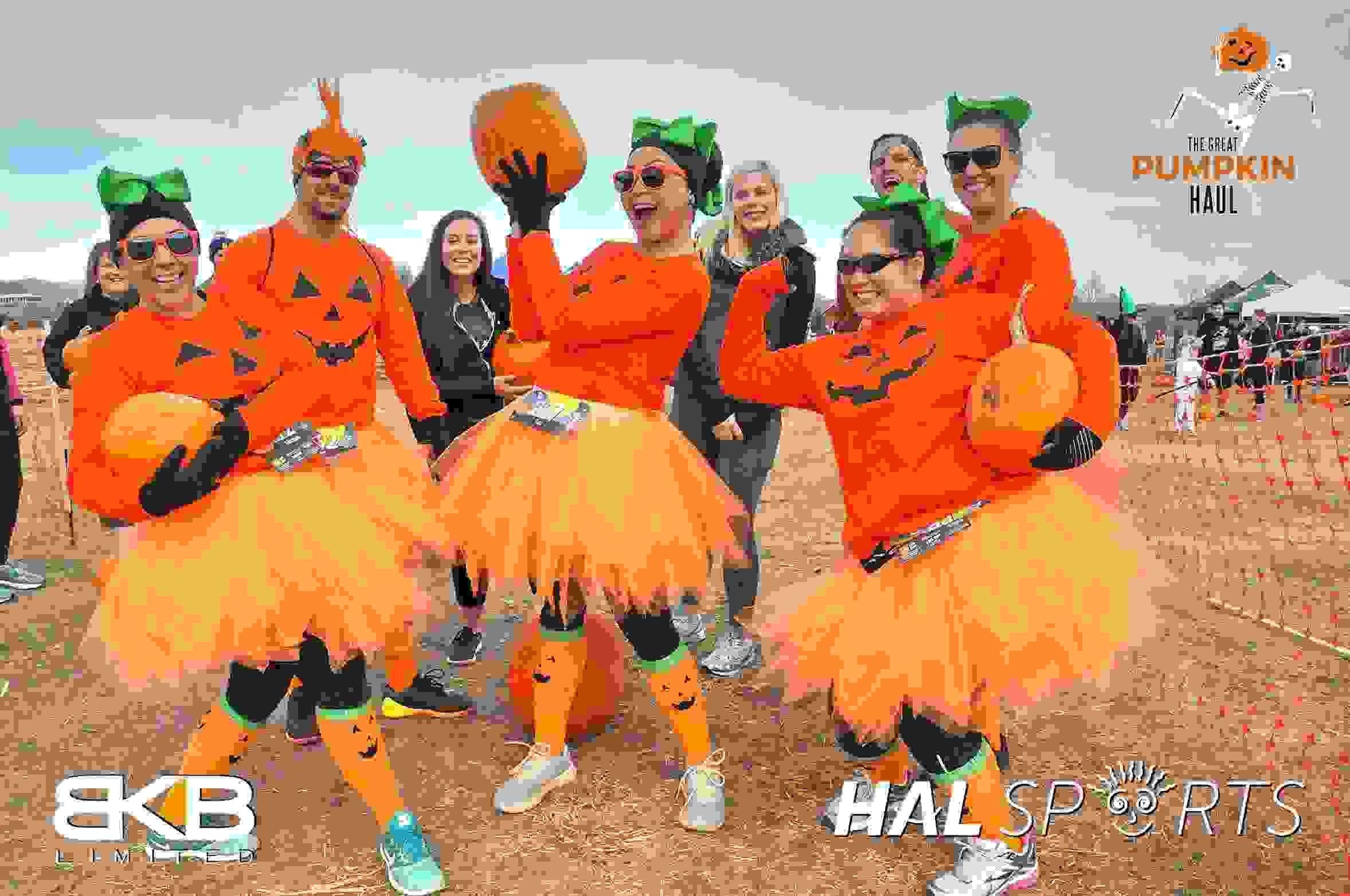 The Great Pumpkin Haul