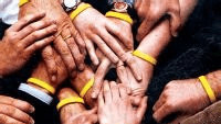 Yellow Silicone Wristbands