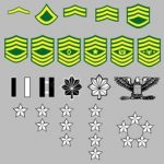 Amy Rank Insignia