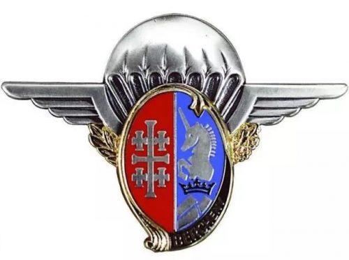 The 1st Light Cavalry Parachute Regiment Metal Pins
