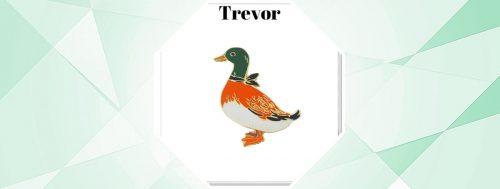 TREVOR LAPEL PINS