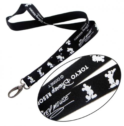 The Disney Lanyards used as Souvenir